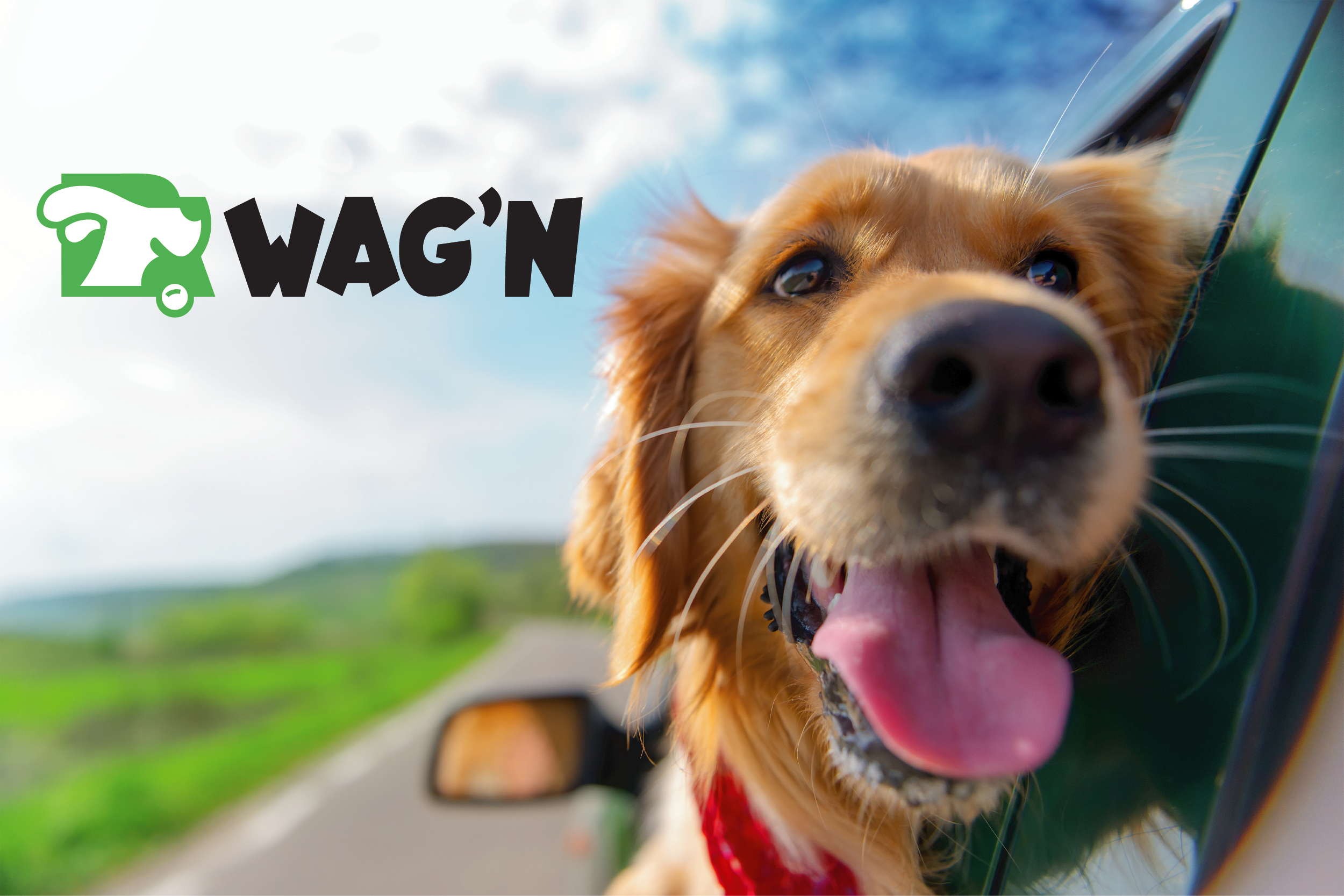 Go Wag'n Pet Transportation